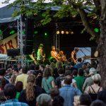 Shamrock Castle Festival 2013